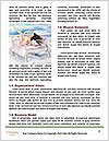 0000083260 Word Templates - Page 4
