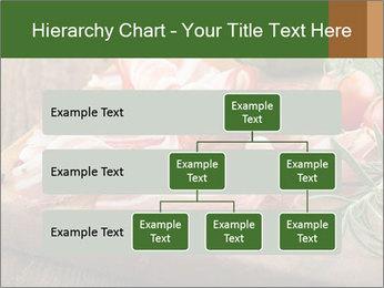 0000083261 PowerPoint Templates - Slide 67