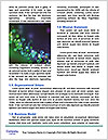 0000083268 Word Template - Page 4
