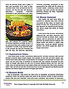 0000083273 Word Template - Page 4