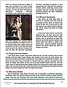 0000083277 Word Template - Page 4