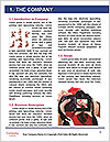0000083279 Word Template - Page 3
