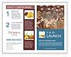 0000083283 Brochure Templates