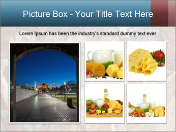 0000083283 PowerPoint Templates - Slide 19