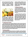0000083283 Word Template - Page 4