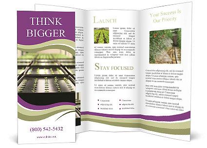 0000083300 Brochure Template