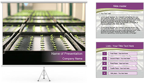 0000083300 PowerPoint Template