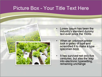 0000083300 PowerPoint Templates - Slide 20