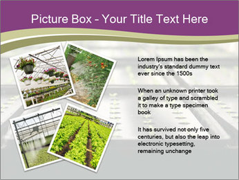 0000083300 PowerPoint Templates - Slide 23