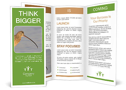 0000083309 Brochure Template