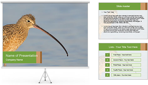0000083309 PowerPoint Template