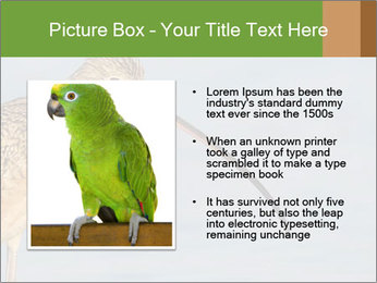 0000083309 PowerPoint Templates - Slide 13
