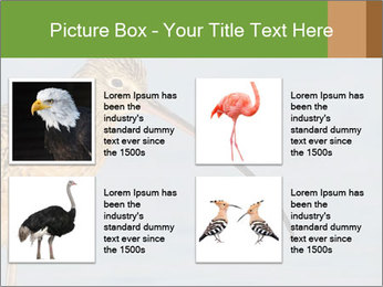 0000083309 PowerPoint Templates - Slide 14