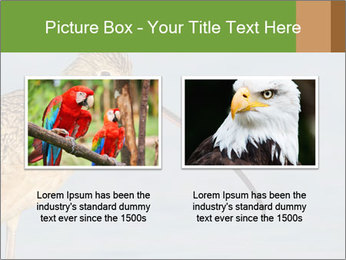 0000083309 PowerPoint Templates - Slide 18