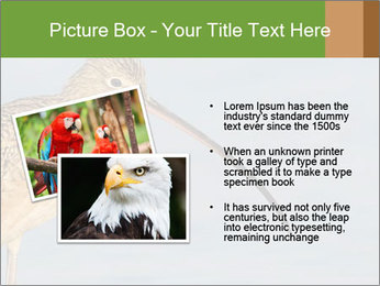 0000083309 PowerPoint Templates - Slide 20