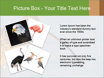 0000083309 PowerPoint Templates - Slide 23