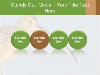 0000083309 PowerPoint Templates - Slide 76