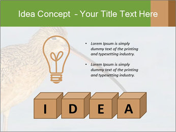 0000083309 PowerPoint Templates - Slide 80