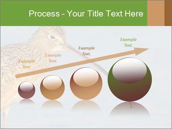 0000083309 PowerPoint Templates - Slide 87