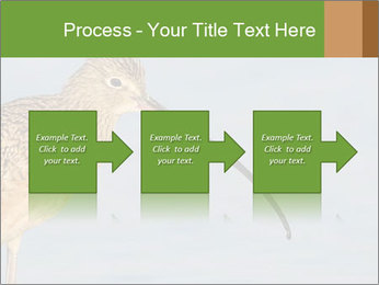 0000083309 PowerPoint Templates - Slide 88