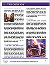 0000083311 Word Template - Page 3