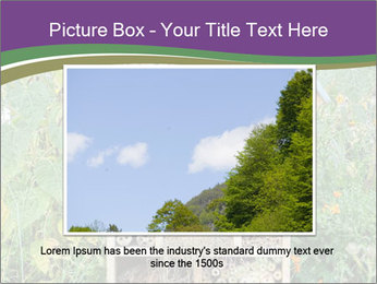 0000083313 PowerPoint Template - Slide 15