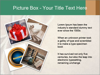 0000083314 PowerPoint Templates - Slide 23