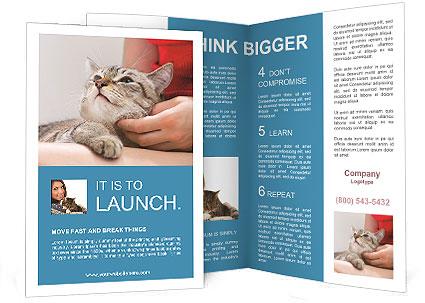 0000083318 Brochure Template