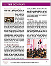 0000083321 Word Template - Page 3
