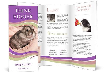 0000083322 Brochure Templates