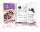 0000083322 Brochure Template