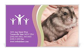 0000083322 Business Card Templates