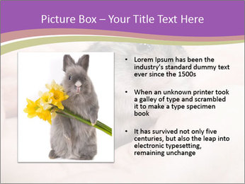 0000083322 PowerPoint Template - Slide 13