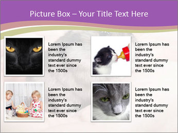 0000083322 PowerPoint Template - Slide 14