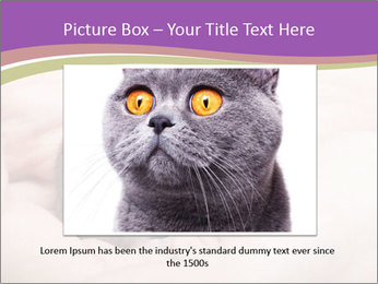 0000083322 PowerPoint Template - Slide 15