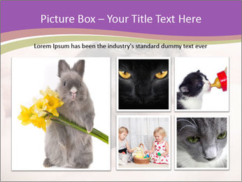 0000083322 PowerPoint Template - Slide 19