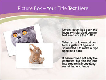 0000083322 PowerPoint Template - Slide 20