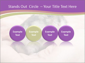 0000083322 PowerPoint Template - Slide 76