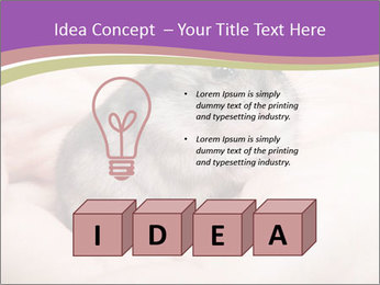 0000083322 PowerPoint Template - Slide 80