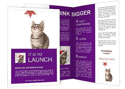 0000083323 Brochure Template