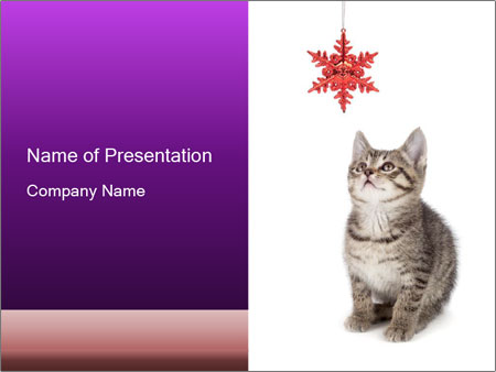 0000083323 PowerPoint Templates