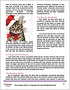 0000083323 Word Template - Page 4