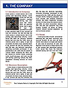 0000083340 Word Template - Page 3