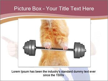 0000083343 PowerPoint Template - Slide 16