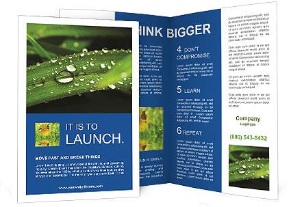 0000083345 Brochure Template