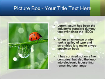 0000083345 PowerPoint Templates - Slide 13