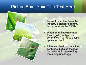 0000083345 PowerPoint Templates - Slide 17