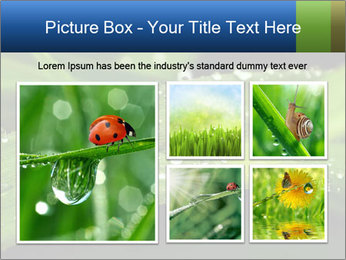 0000083345 PowerPoint Templates - Slide 19
