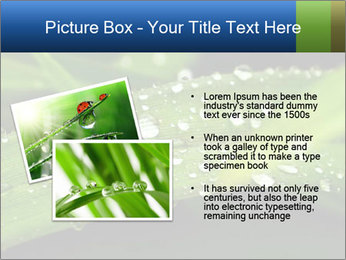 0000083345 PowerPoint Templates - Slide 20