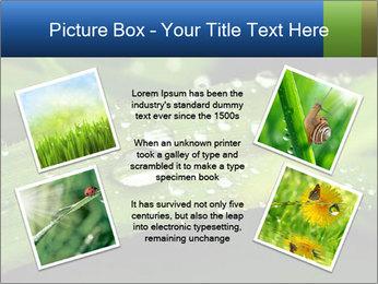 0000083345 PowerPoint Templates - Slide 24